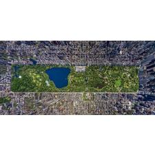 Central Park, New York - Panorama, 3000 brikker